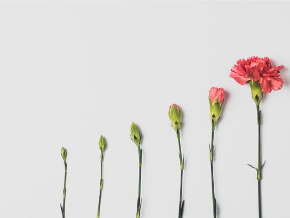 Measuring Content Success: Metrics That Matter